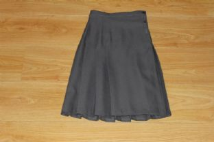Grey Pleated Skirt (older years)